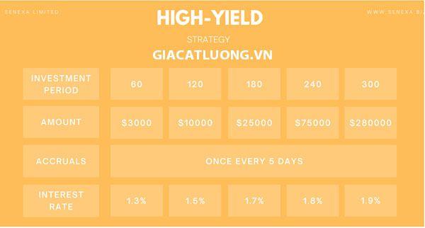 Plan High Yield
